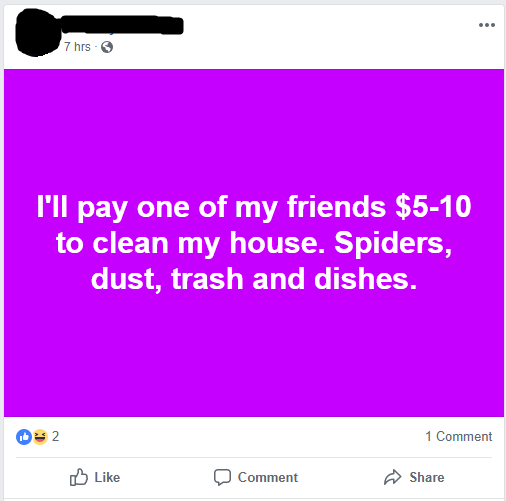 Text - 7 hrs I'll pay one of my friends $5-10 to clean my house. Spiders, dust, trash and dishes. 1 Comment Share Like Comment