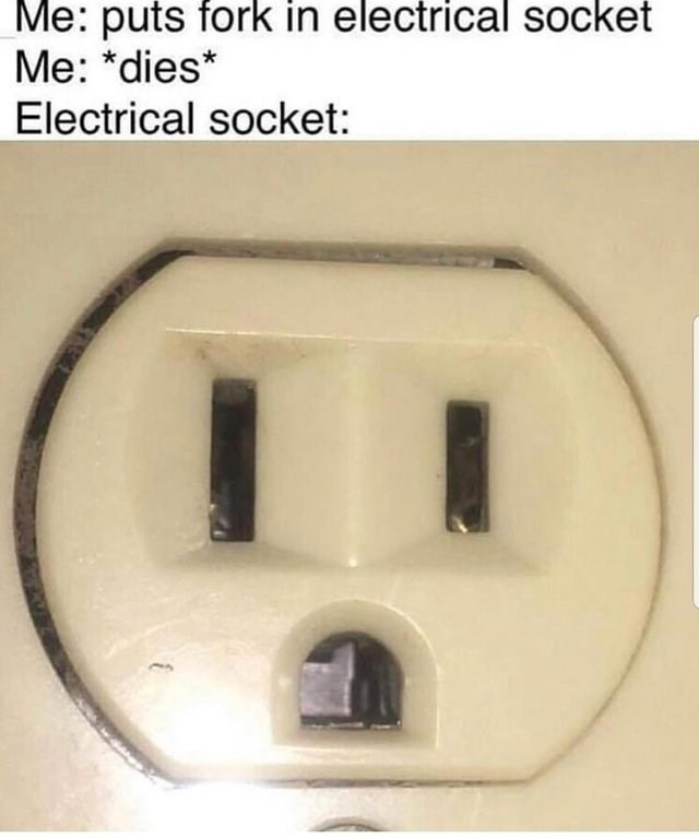 picture electrical socket Me: puts fork in electrical socket Me: *dies* Electrical socket: