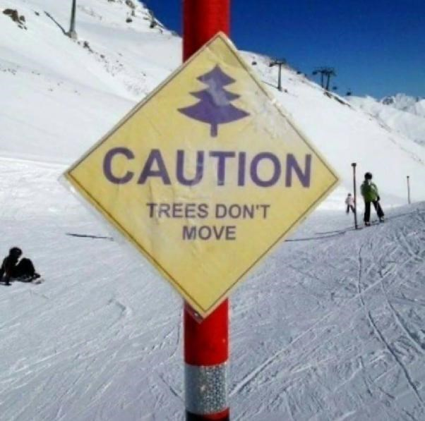 sign on pole with snow fields behind CAUTION TREES DON'T MOVE