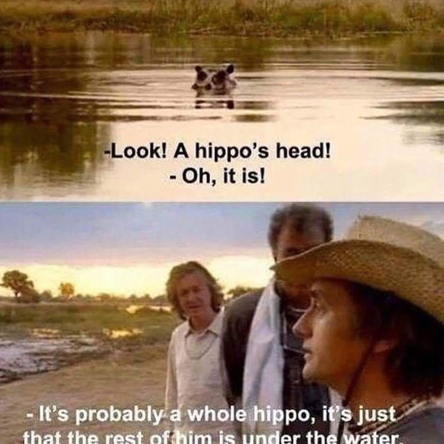 still from movie Look! A hippo's head! - Oh, it is! -It's probably a whole hippo, it's just that the rest of him is under the water