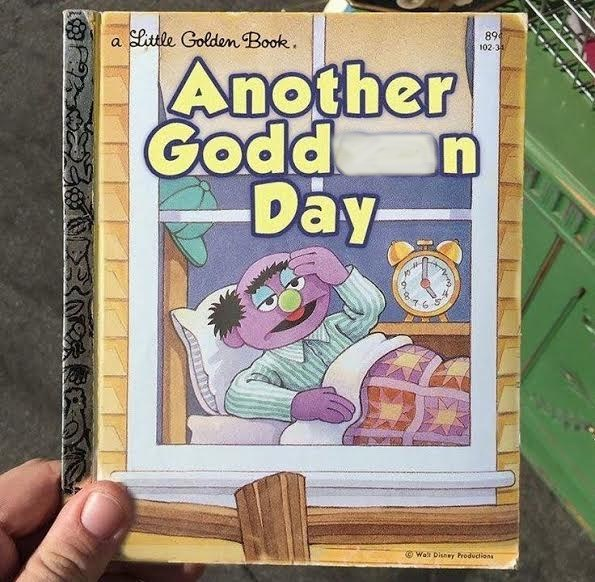 "meme about a children's book with the title ""another godd day"""