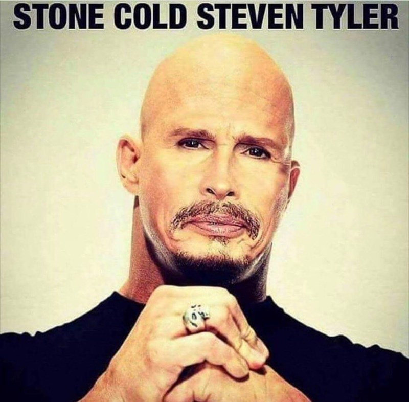 meme about steven tylers head photoshopped onto stone colds body