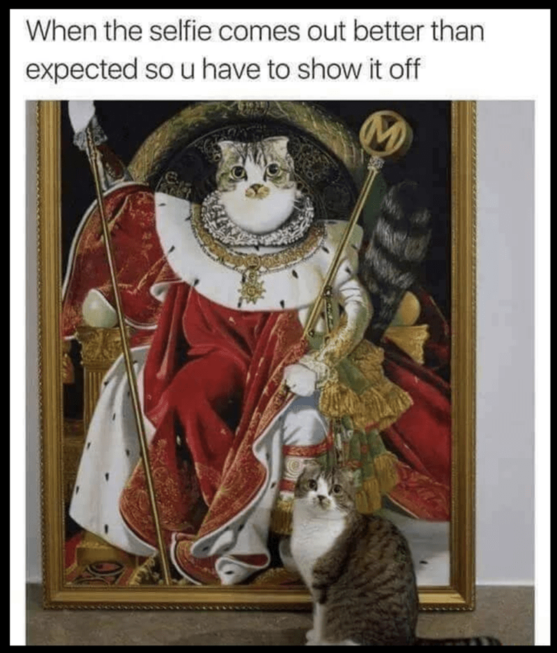 meme of a cat standing next to a painting of a royal cat
