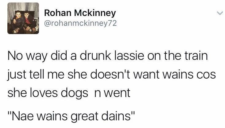 """Text - Rohan Mckinney @rohanmckinney72 No way did a drunk lassie on the train just tell me she doesn't want wains cos she loves dogs n went """"Nae wains great dains"""""""