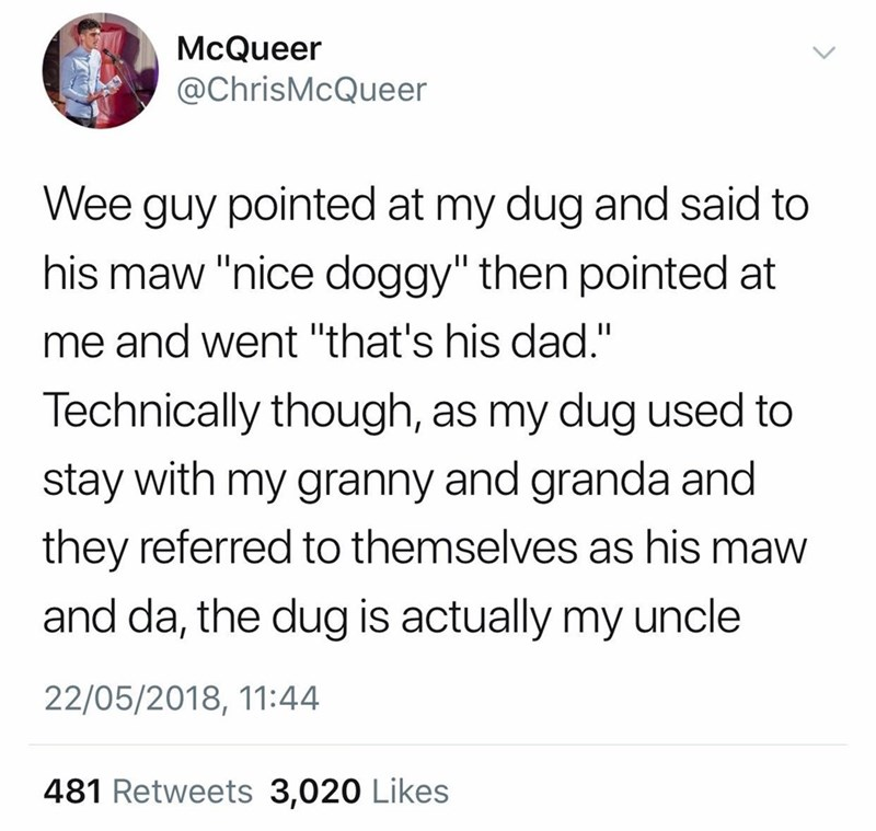 """Text - McQueer @ChrisMcQueer Wee guy pointed at my dug and said to his maw """"nice doggy"""" then pointed at me and went """"that's his dad."""" Technically though, as my dug used to stay with my granny and granda and they referred to themselves as his maw and da, the dug is actually my uncle 22/05/2018, 11:44 481 Retweets 3,020 Likes"""