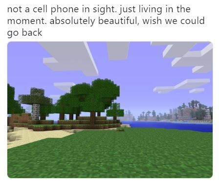 """Caption that reads, """"Not a cell phone in sight, just living in the moment. Absolutely beautiful, wish we could go back"""" above a still from Minecraft"""