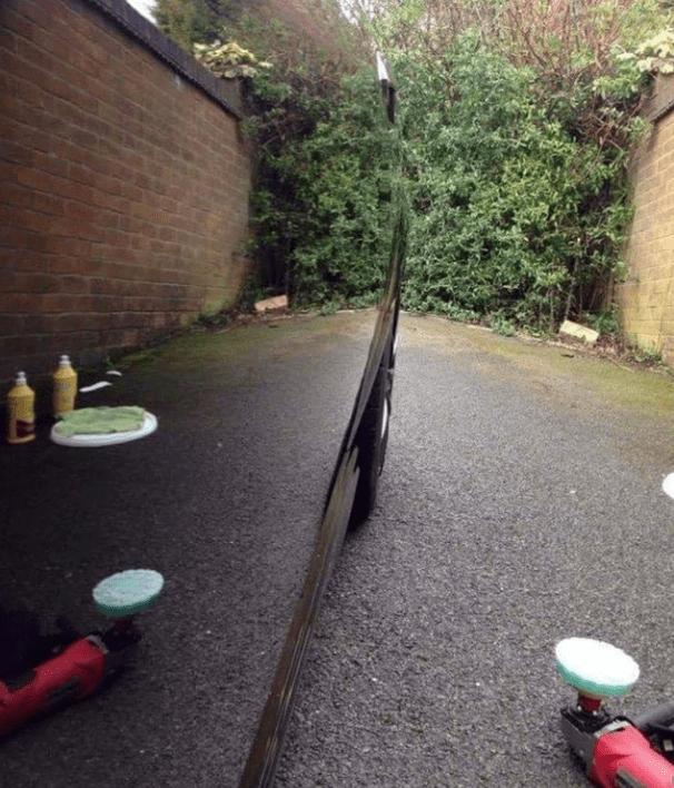 perspective - Tree