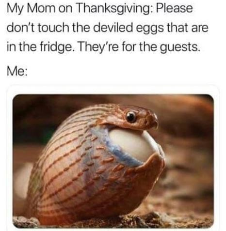 meme about not being able to eat the food because it's for the guests