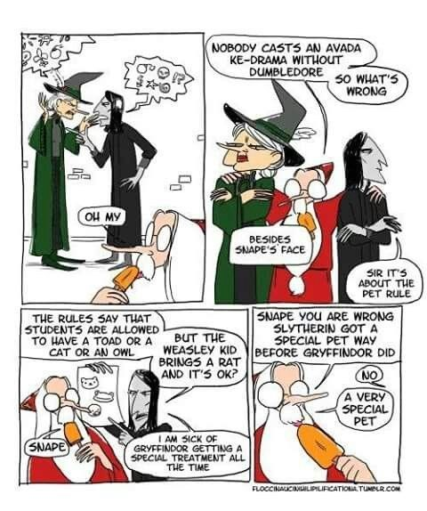 Dumbledore comic - Cartoon - NOBODY CASTS AN AVADA KE-DRAMA WITHOUT DUMBLEDORE 50 WHATS WRONG AW HO BESIDES SNAPES FACE SIR ITS ABOUT THE PET RULE SNAPE YOu ARE WRONG SLYTHERIN GOT A SPECIAL PET WAY THE RULES SAY THAT STUDENTS ARE ALLOWED TO HAVE A TOAD OR A CAT OR AN OWL BUT THE WEASLEY KID BRINGS A RAT EFORE GRYFFINDOR DID AND ITS OK? NO A VERY SPECIAL PET I AM SICK OF GRYFFINDOR GETTING A SPECIAL TREATMENT ALL THE TIME (SNAPE FLOCCINALCIMEILIPILIFCATIONATUNDLRCOM