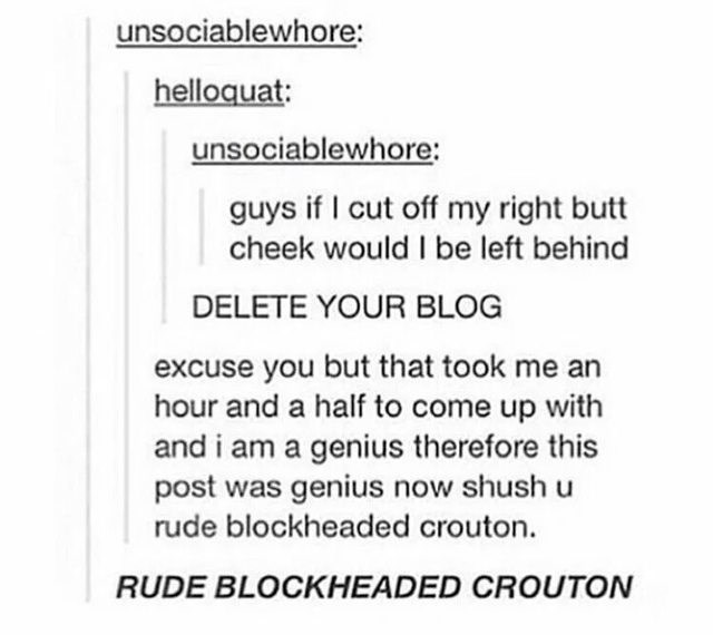 Text - unsociablewhore: helloquat: unsociablewhore: guys if I cut off my right butt cheek would l be left behind DELETE YOUR BLOG excuse you but that took me an hour and a half to come up with and i am a genius therefore this post was genius now shush u rude blockheaded crouton. RUDE BLOCKHEADED CROUTON
