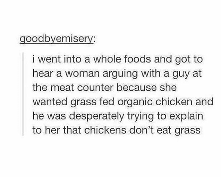 Text - goodbyemisery: i went into a whole foods and got to hear a woman arguing with a guy at the meat counter because she wanted grass fed organic chicken and he was desperately trying to explain to her that chickens don't eat grass