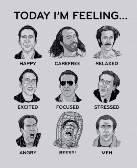 """""""how I'm feeling today"""" chart with different Nicolas Cage movie characters"""