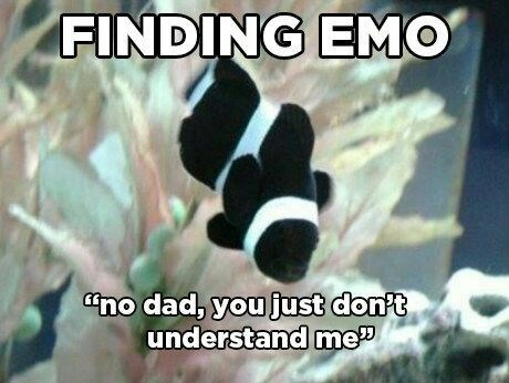 Finding Nemo parody about emo black and white clownfish