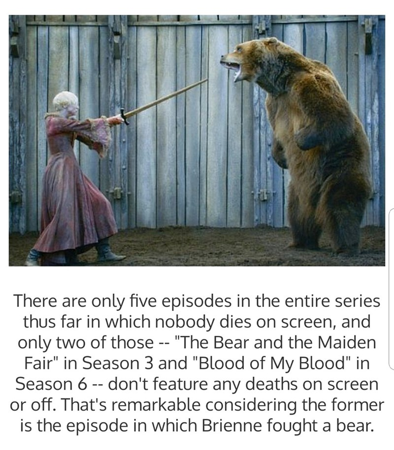 "Adaptation - There are only five episodes in the entire series thus far in which nobody dies on screen, and only two of those -- ""The Bear and the Maiden Fair"" in Season 3 and ""Blood of My Blood"" in Season 6 - don't feature any deaths on screen or off. That's remarkable considering the former is the episode in which Brienne fought a bear."