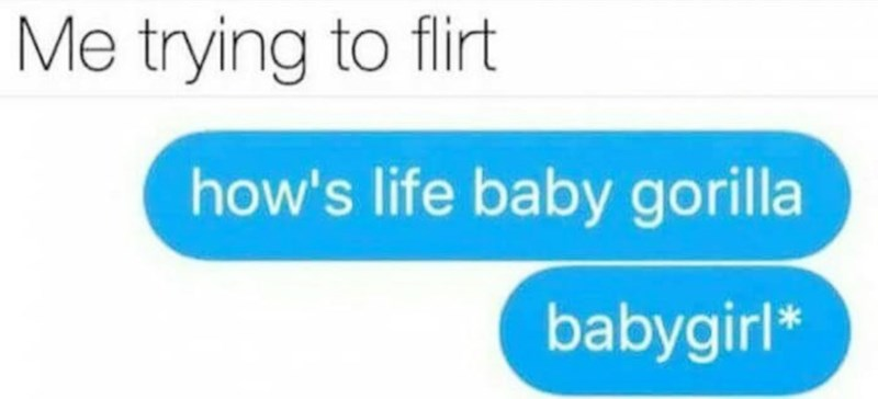 meme about trying to flirt with a girl and it comes out wrong