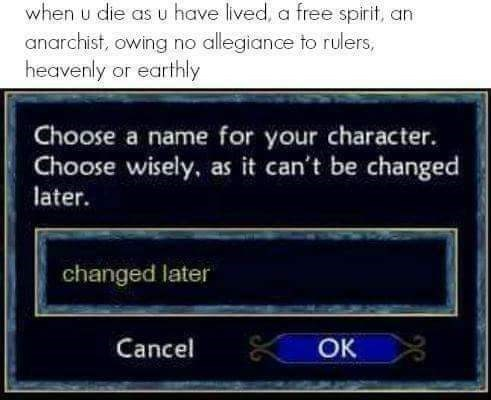 "screenshot from game of player choosing the name ""changed later"" after instructions warn that the name ""can't be changed later"""