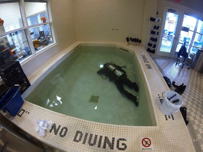 "picture of person in diving gear underwater inside pool that says ""no diving"" on its side"