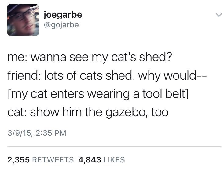 pun about cat's shed fur being an actual shed that it had built outside