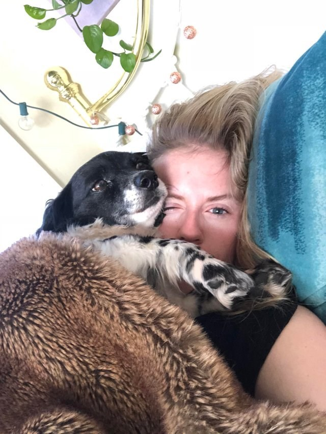 cute animal picture of dog snuggling owner's face while they both lay in bed