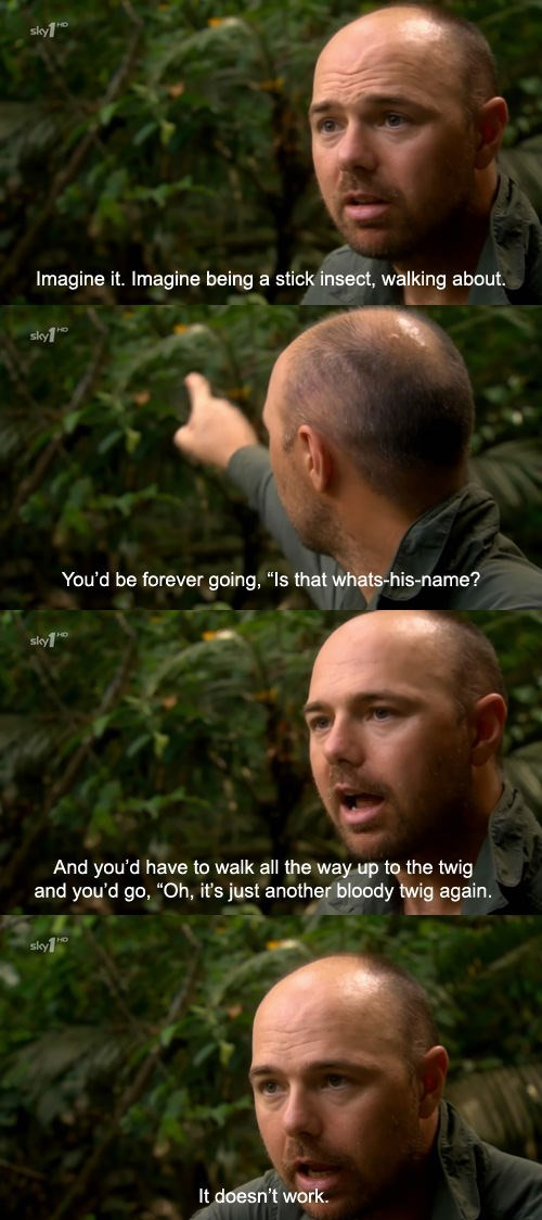 Karl Pilkington quote about stick insects unable to tell each other apart from actual twigs