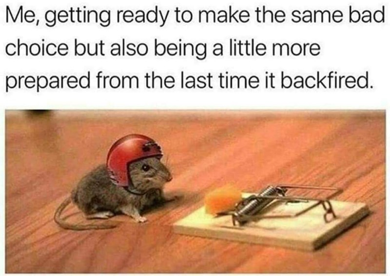 meme about repeating mistakes with slightly more care with picture of mouse wearing helmet next to mousetrap