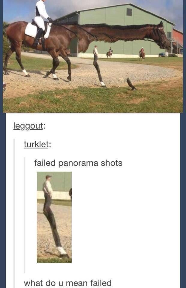 meme about failed panorama shots with a horse