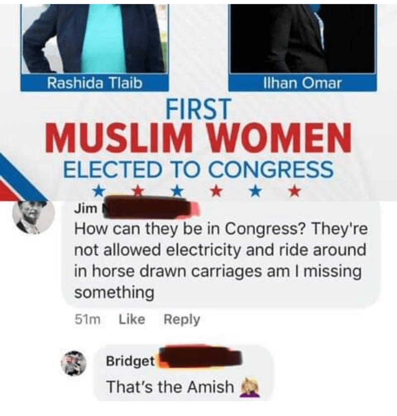 Product - Rashida Tlaib lhan Omar FIRST MUSLIM WOMEN ELECTED TO CONGRESS Jim How can they be in Congress? They're not allowed electricity and ride around in horse drawn carriages am I missing something 51m Like Reply Bridget That's the Amish