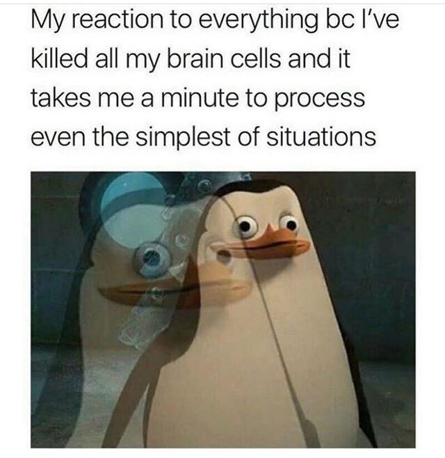picture of blank faced penguin from Madagsacr as he's trying to process information