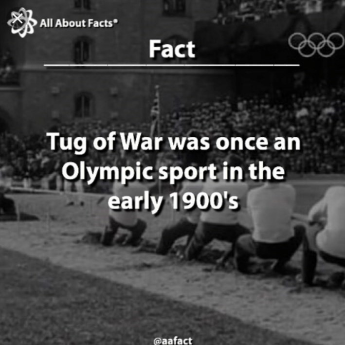Font - All About Facts Fact Tug of War was once an Olympicsport in the early 1900's @aafact