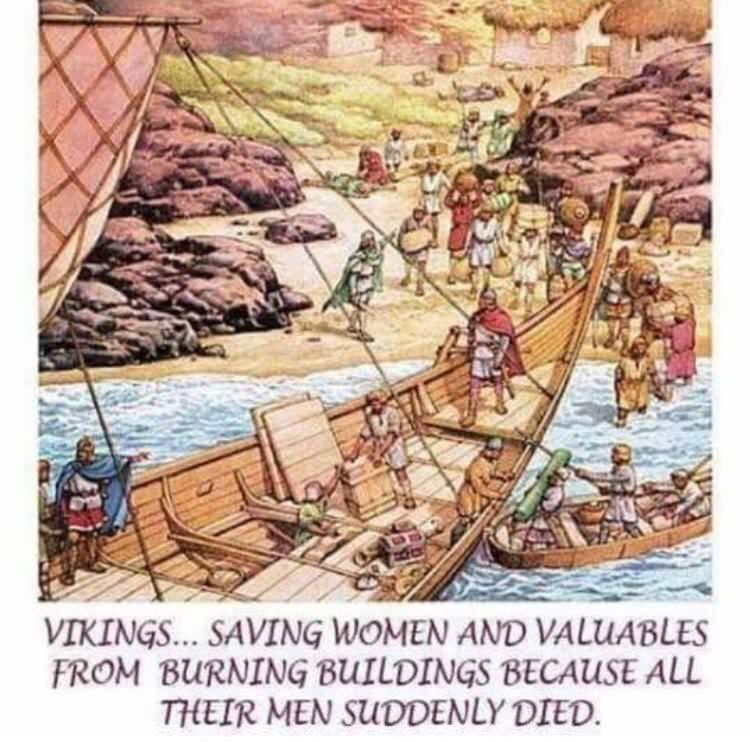 "meme about vikings ""saving"" women and valuables because they killed their men"