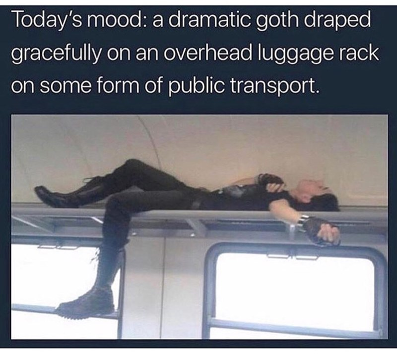 meme of a goth laying on a luggage rack on a train