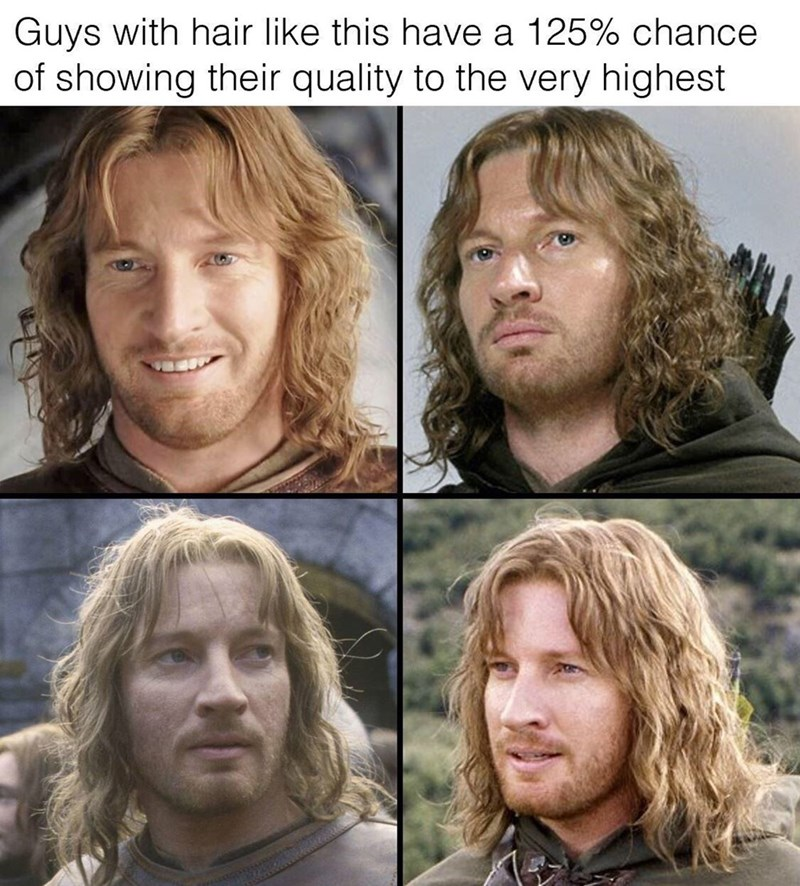 LotR meme about guy with Faramir's hair proving their worth