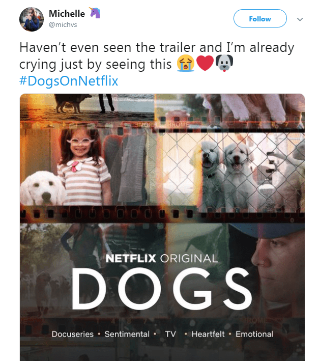 netflix dogs - Font - Michelle Follow @michvs Haven't even seen the trailer and I'm already crying just by seeing this #DogsOnNetflix 97OA ROME NETFLIX ORIGINAL DOGS Docuseries Sentimental TV Heartfelt Emotional