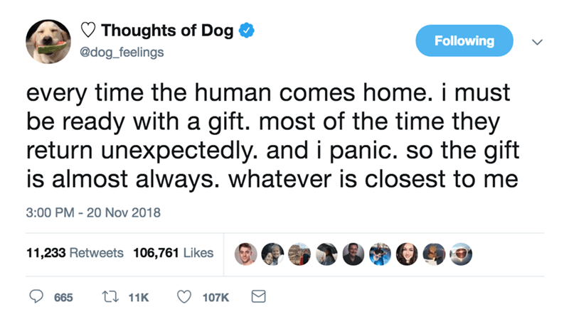 so cute wholesome adorable pure thoughts of dog - 9239657472