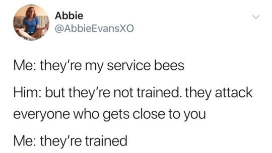 Funny meme about owning attack bees.