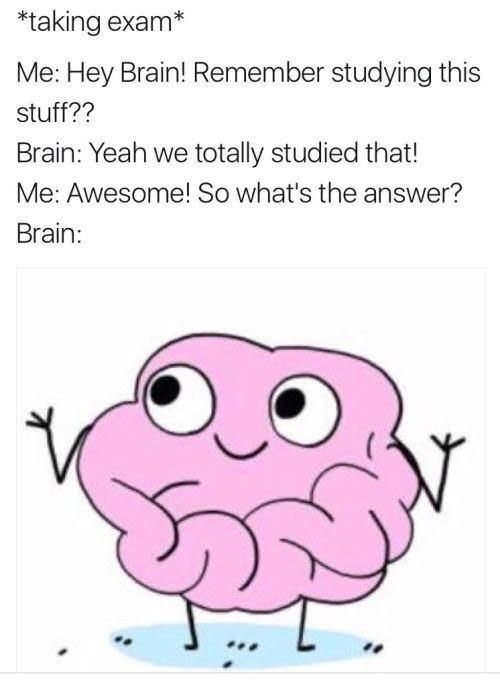 meme about taking an exam and not remembering anything you studied
