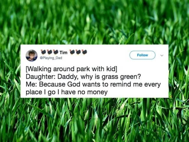 Grass - Tim Follow Playing Dad Walking around park with kid] Daughter: Daddy, why is grass green? Me: Because God wants to remind me every place I go I have no money