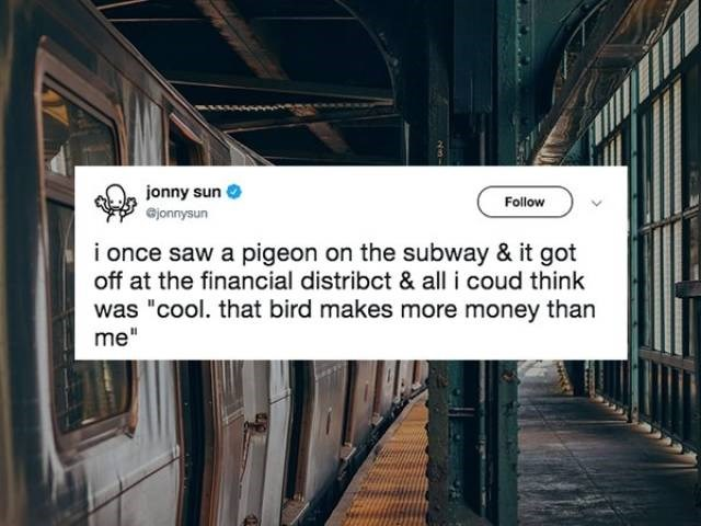 """Text - jonny sun ejonnysun Follow i once saw a pigeon on the subway & it got off at the financial distribct & all i coud think was """"cool. that bird makes more money than me"""""""