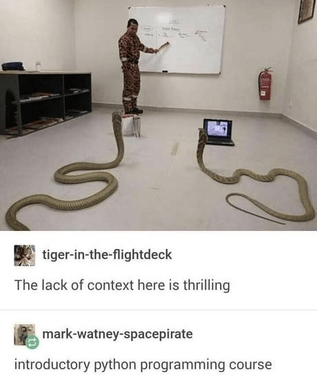 Snake - tiger-in-the-flightdeck The lack of context here is thrilling mark-watney-spacepirate introductory python programming course