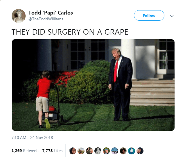 Product - Todd 'Papi' Carlos Follow @TheToddWilliams THEY DID SURGERY ON A GRAPE 7:10 AM 24 Nov 2018 Eh 1,269 Retweets 7,778 Likes TEH