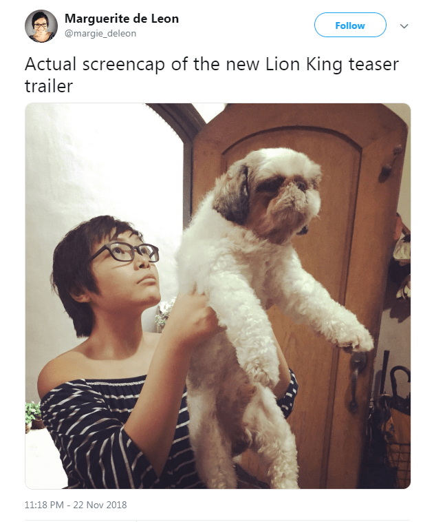 picture of woman holding her dog up similarly to how baby Simba is held in the Lion King