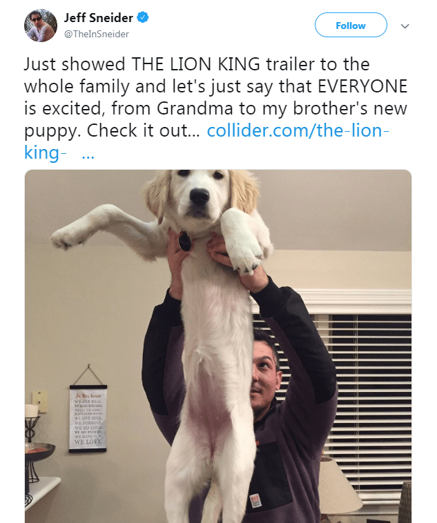 picture of man holding puppy in the air recreating the scene of baby Simba being held up in the Lion King