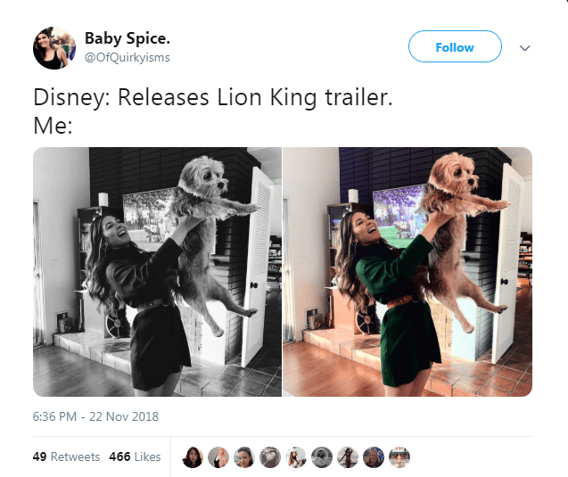 pictures of woman holding her dog up similarly to how baby Simba is held in the Lion King