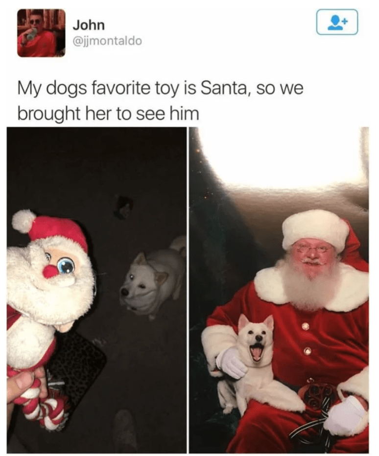 excited so excited cute doggo happy dog santa happy - 9241082368
