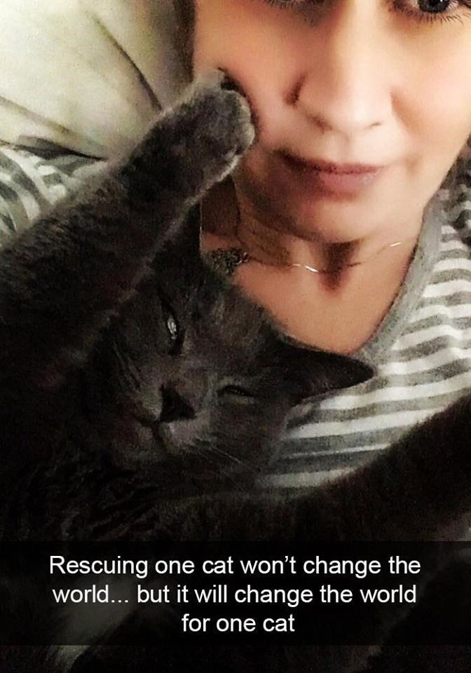 Nose - Rescuing one cat won't change the world... but it will change the world for one cat