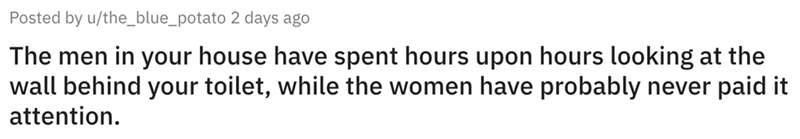 Text - Posted by u/the_blue_potato 2 days ago The men in your house have spent hours upon hours looking at the wall behind your toilet, while the women have probably never paid it attention