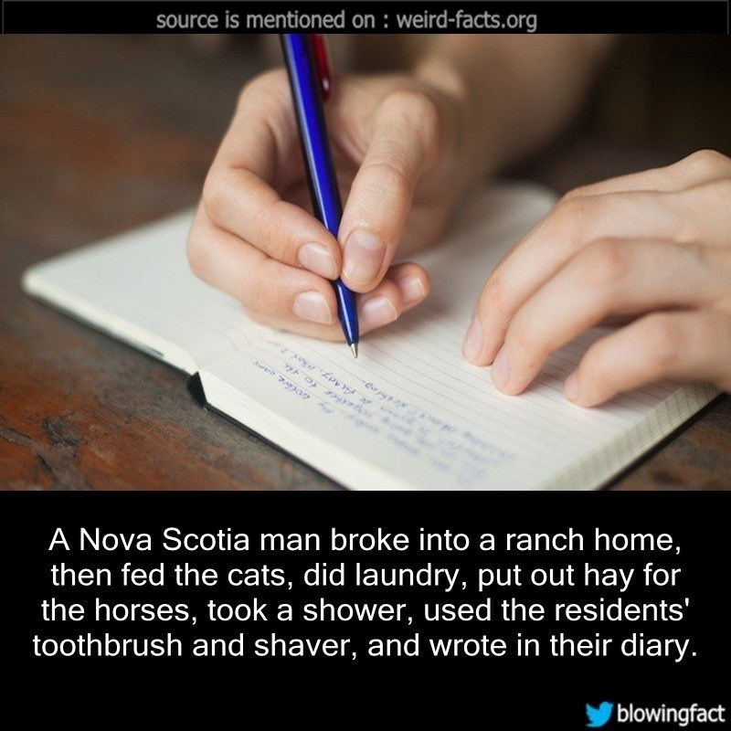 Text - source is mentioned on : weird-facts.org e7a A Nova Scotia man broke into a ranch home, then fed the cats, did laundry, put out hay for the horses, took a shower, used the residents' toothbrush and shaver, and wrote in their diary. blowingfact