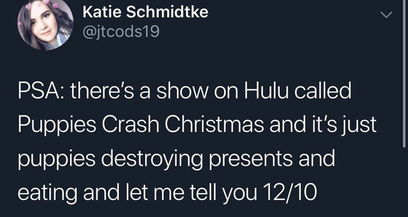 tweet about a show where puppies destroy Christmas presents