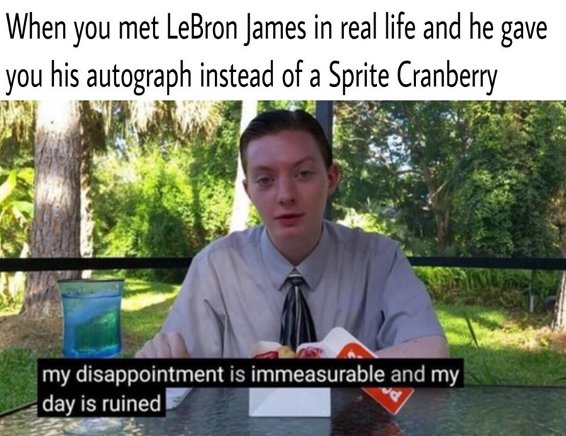 """Caption that reads, """"When you met LeBron James in real life and he gave you his autograph instead of Sprite Cranberry"""" above a pic of a kid in a button-up shirt and tie saying, """"My disappointment is immeasurable and my day is ruined"""""""