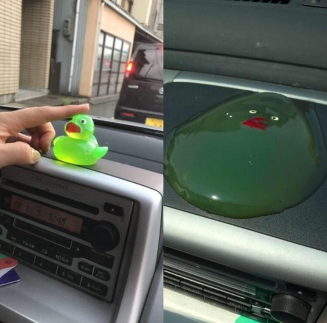 pic of a rubber duck on a cars windshield that melted from the sun